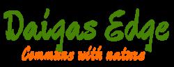 Daigas Edge Logo